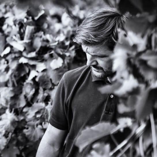 Die unglaublichen Weine von Stéphane Ogier