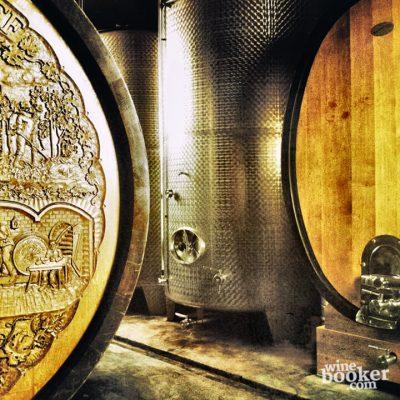 Der Weinkeller vom Weingut Gesellmann