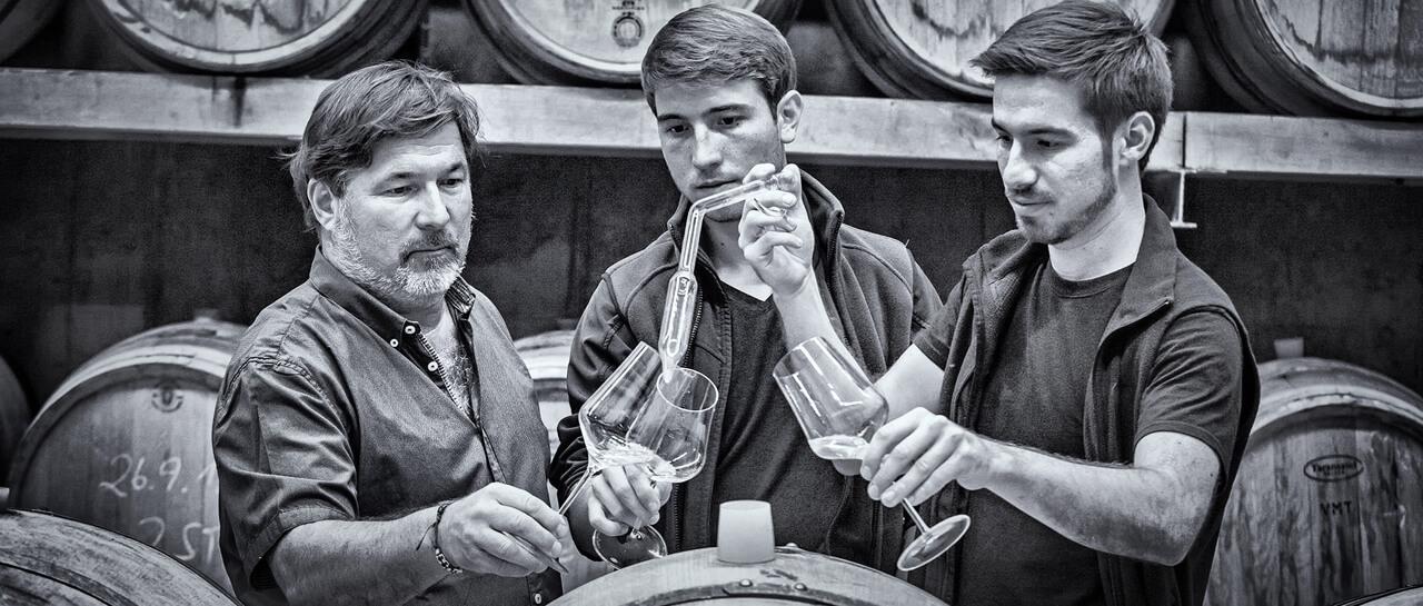 Die Weine von Sattlerhof aus der Südsteiermark
