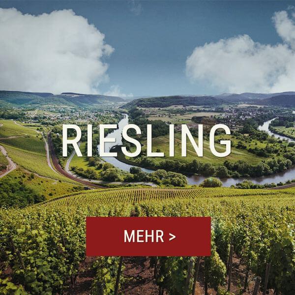 Riesling Weine bei Winebooker online kaufen